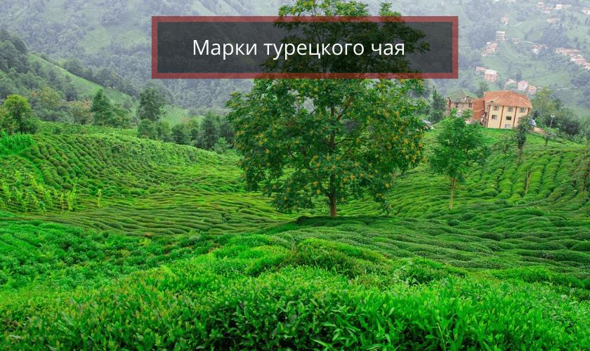 Марки турецкого чая