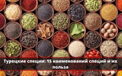 Турецкие специи: ТОП-15 наименований специй с фото