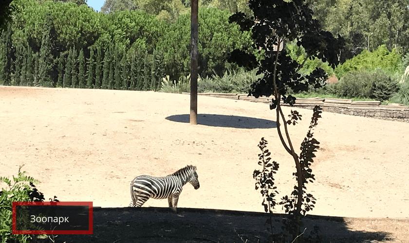 Зоопарк в Измире