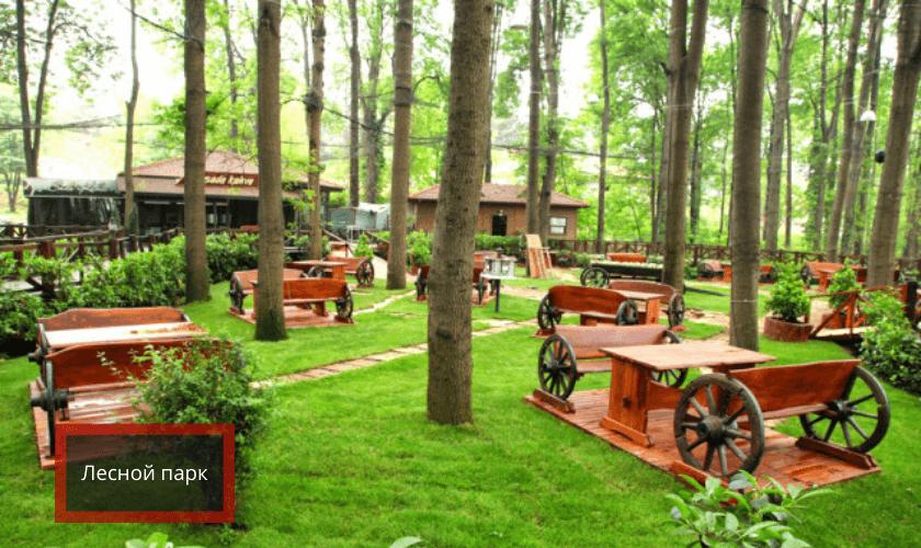 лесной парк Сакарья